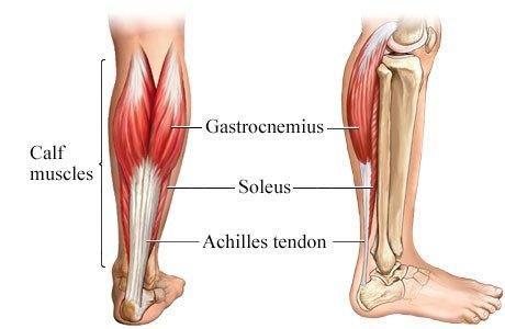 meniscus calf cramps